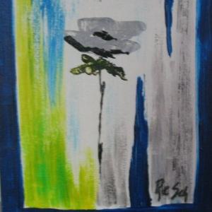 blau/graue Rose